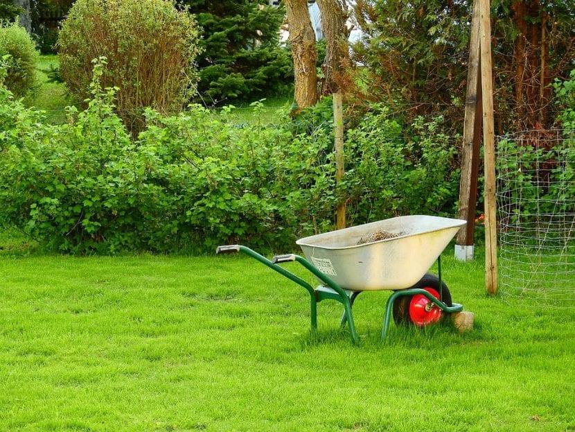 Un jardín siempre es motivo de alegría, ¿o quizás no?