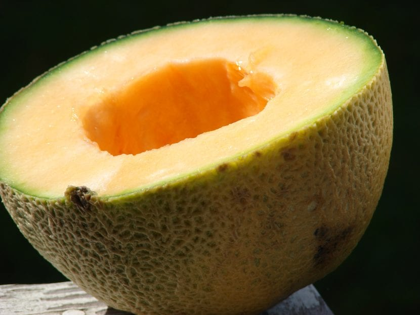 El fruto del melón tiene un sabor dulce