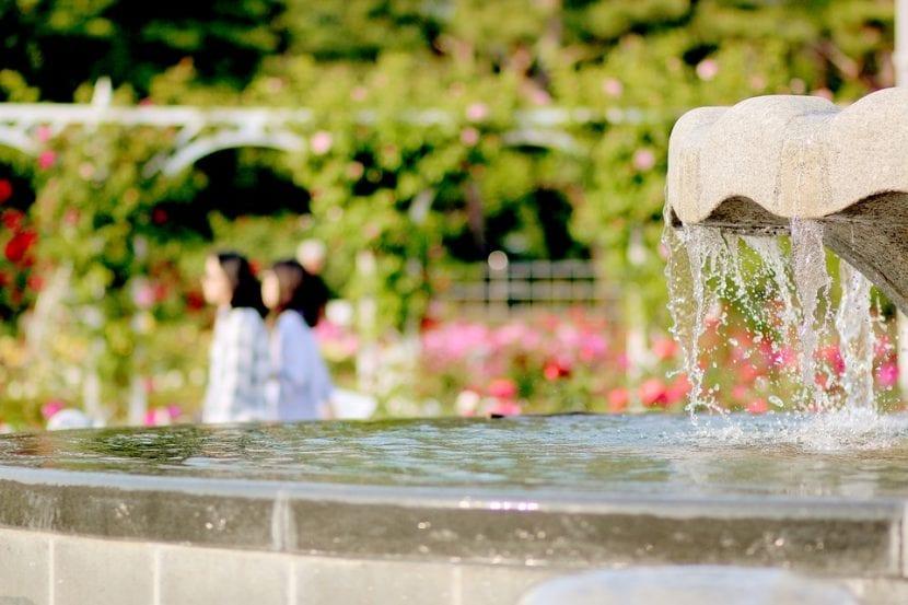 Fuente de jardín con un diseño romántico