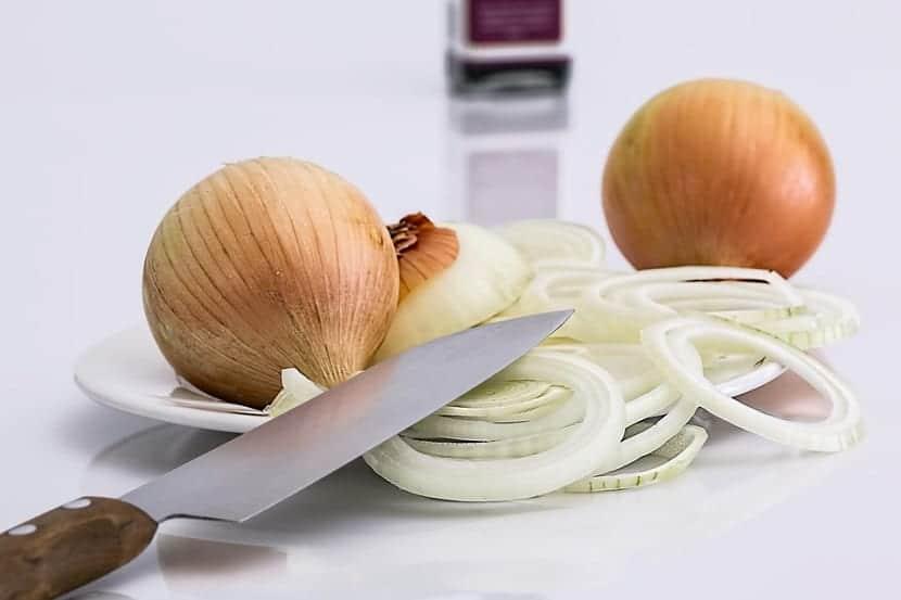 cebolla rebanada en rodajas encima de un plato