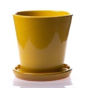 Modelo de maceta amarilla esmaltada