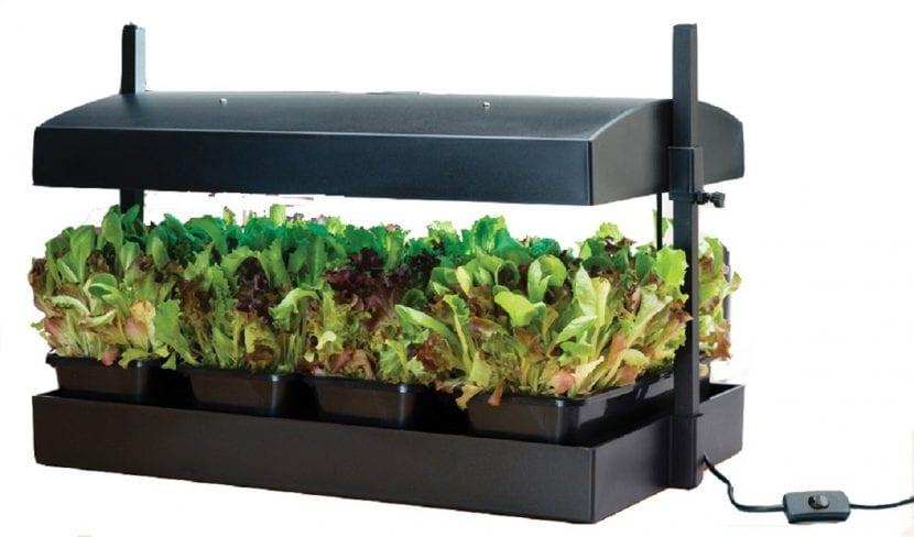 Kit de cultivo hidropónico de la marca Garland