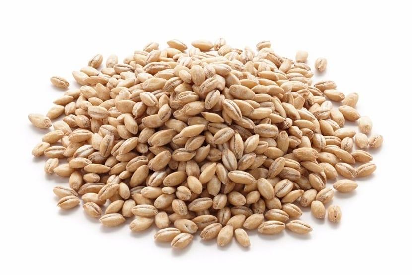 grano maduro