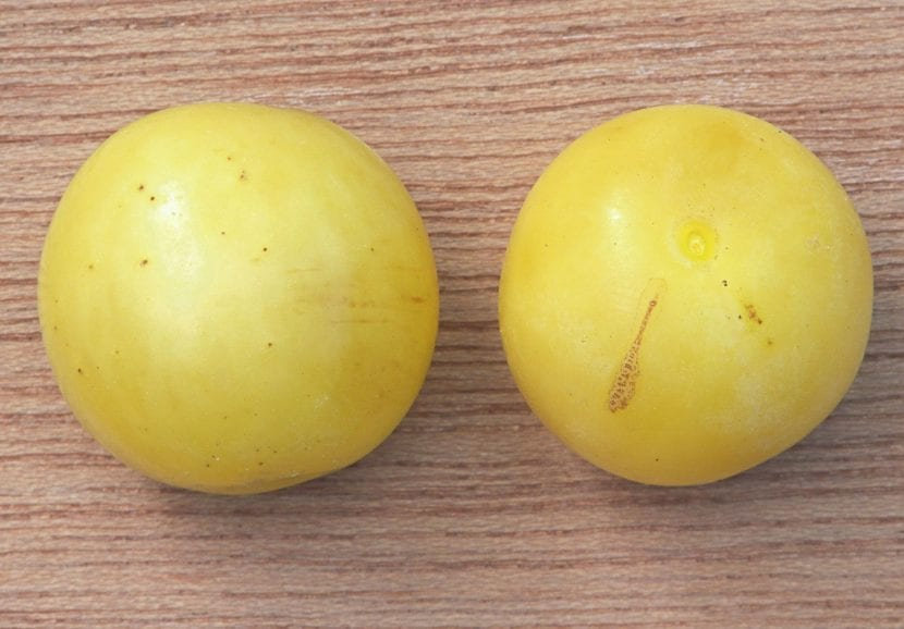 Los frutos del mirabeles son amarillos o rojos