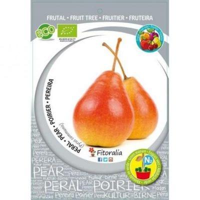 El peral ercolini produce frutos muy jugosos