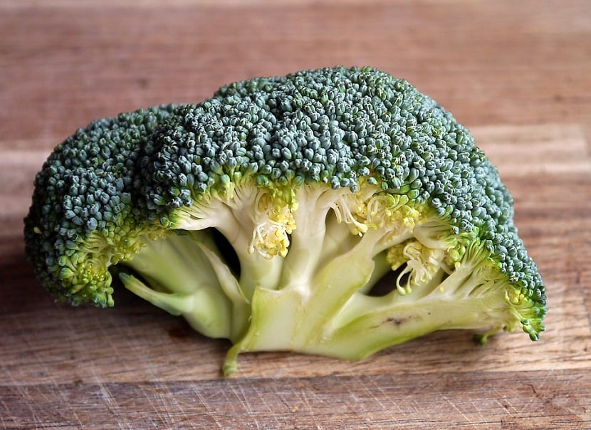 ramillete de brocoli verde