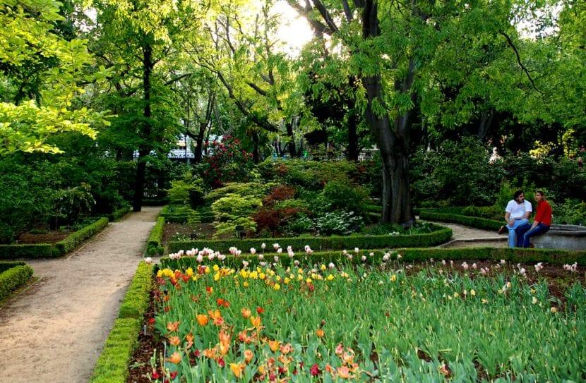 Vista de un área del jardín