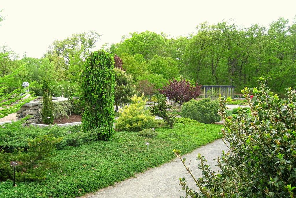 El jardín necesita cuidados todo el año