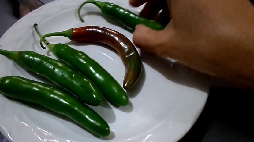 chile serrano colocados en un plato