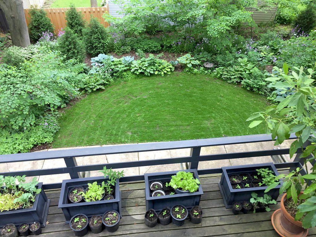 Cómo reducir el ruido en el jardín