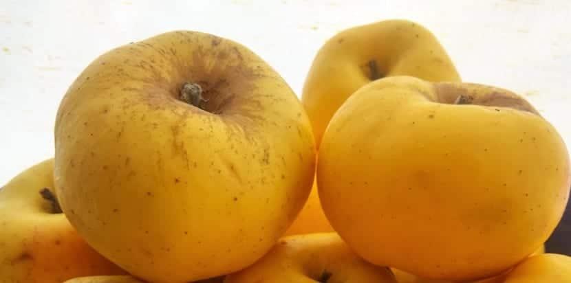 manzana al natural