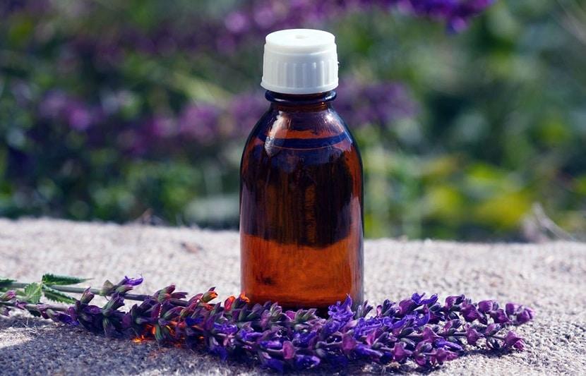 Propiedades medicinales de la Salvia sclarea