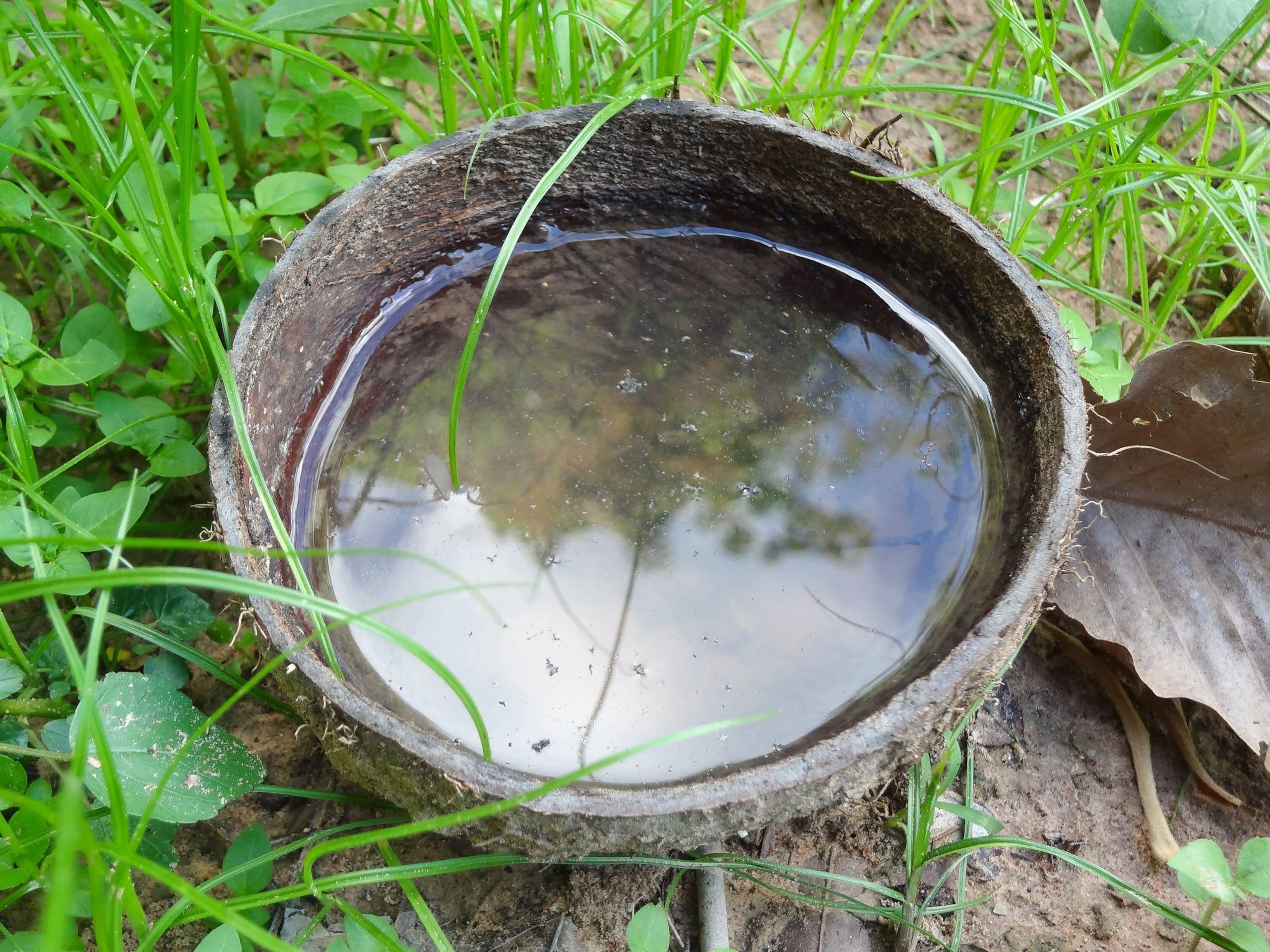 El agua estancada puede oler mal