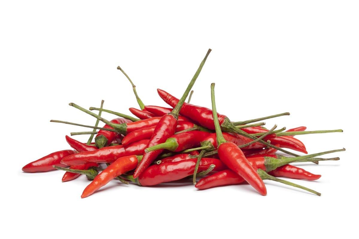 guindillas rojas o Capsicum frutescens