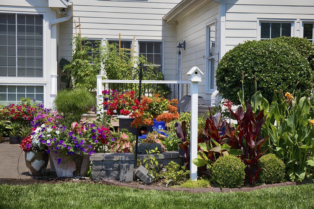 Busca la fuente del mal olor en tu jardín