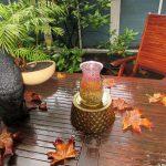 La lluvia puede formar parte del encanto de tu jardín