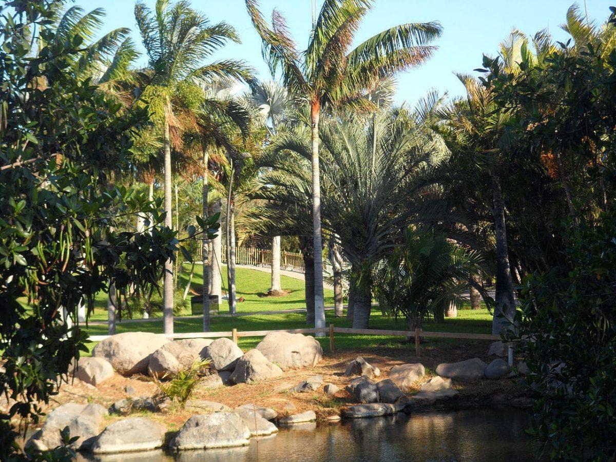 El Palmetum de Tenerife es un jardín moderno