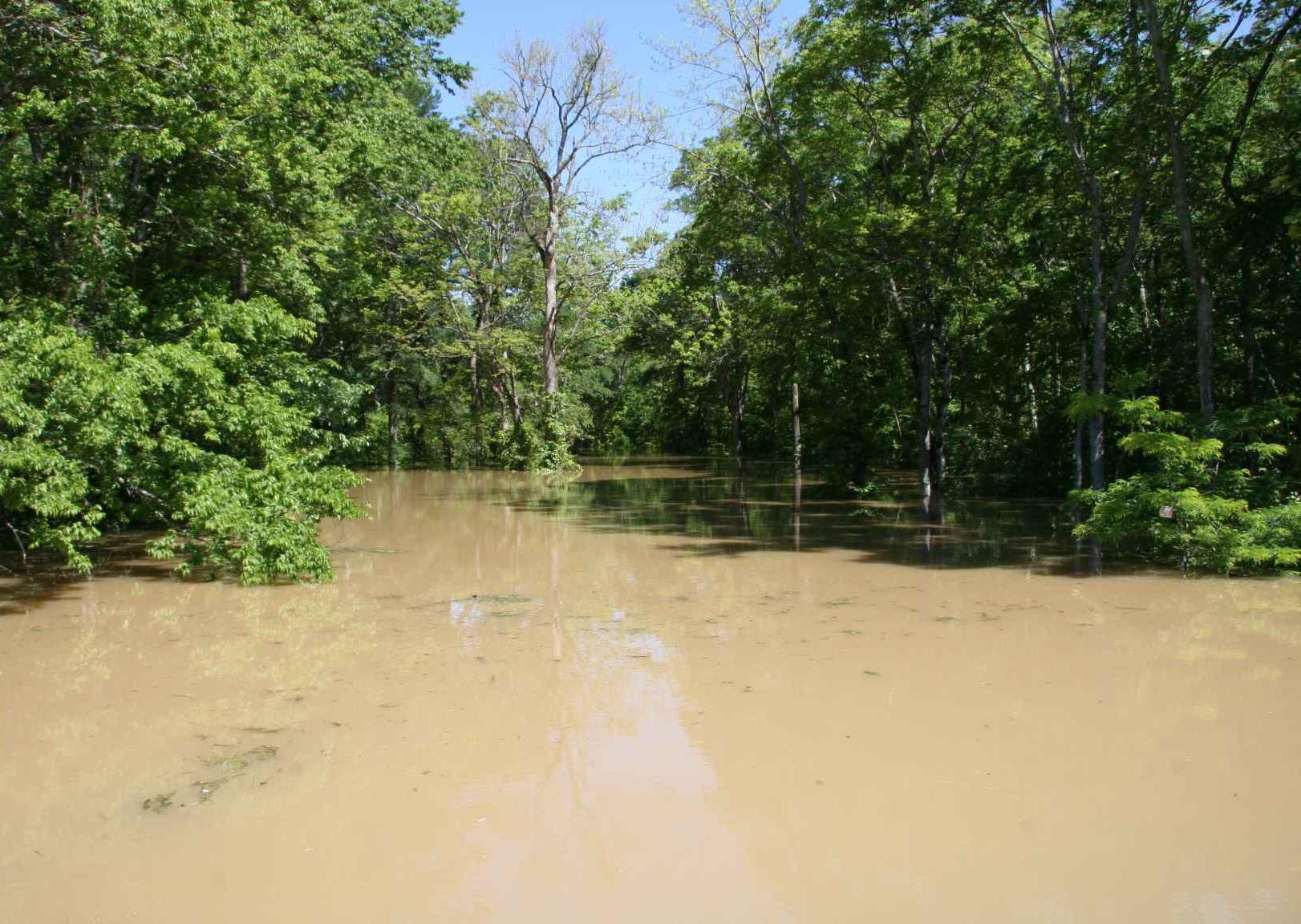 El exceso de agua por lluvias causa serios daños