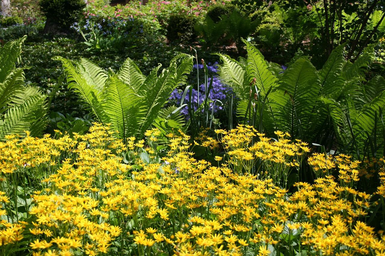 El verano es una estación de luz y calor en el jardín