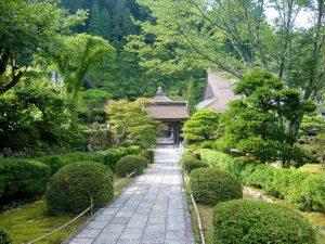 Si tienes un jardín pequeño, debes poner árboles de reducido tamaño