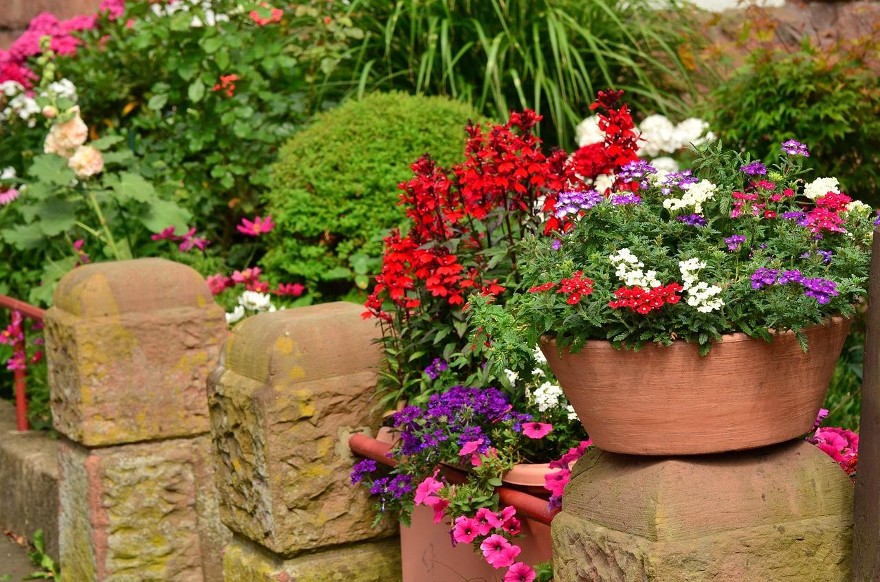 Las flores son perfectas para decorar terrazas