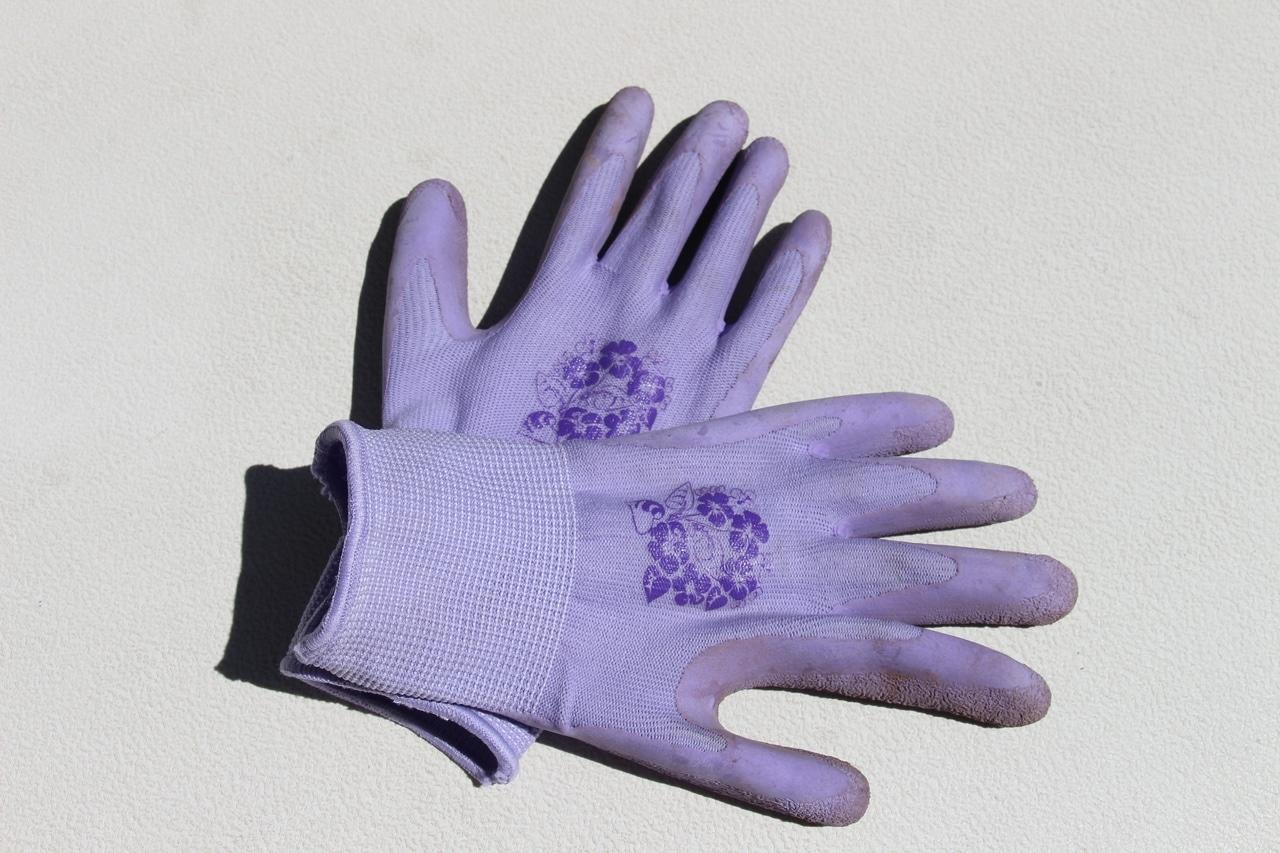 Los guantes se han de utilizar cuando se plantan cactus