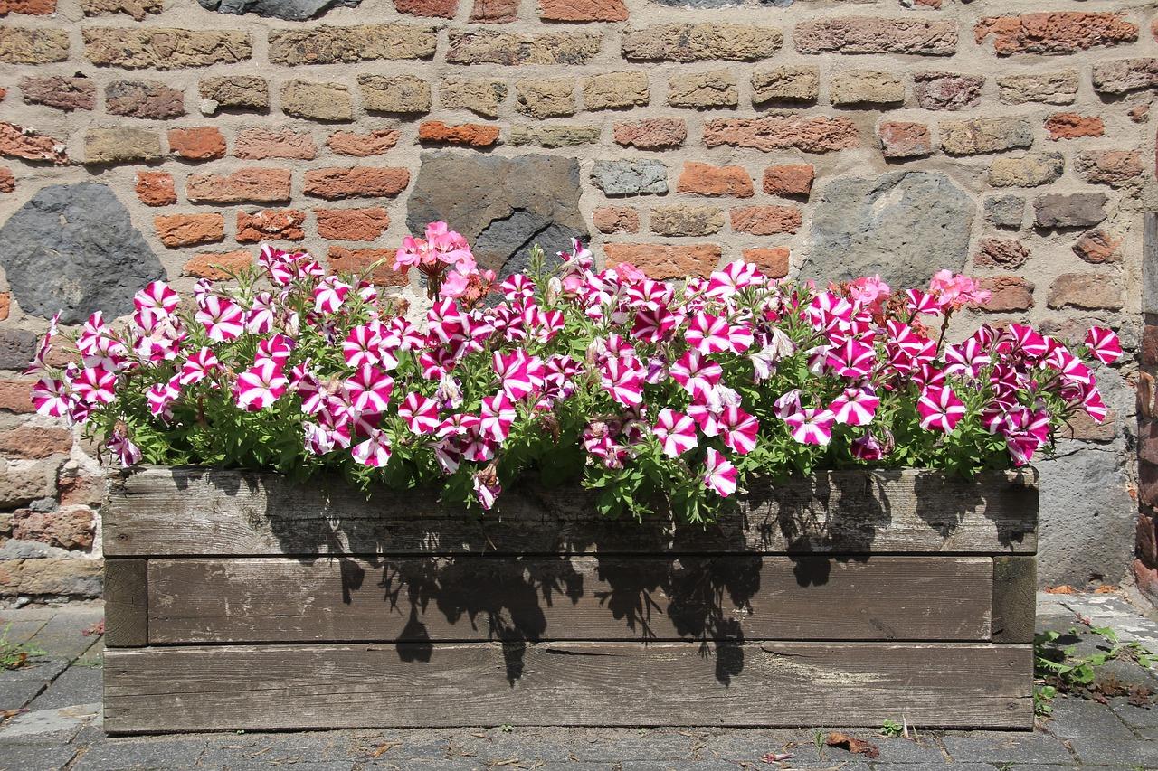 Puedes hacer jardineras con palets de manera sencilla
