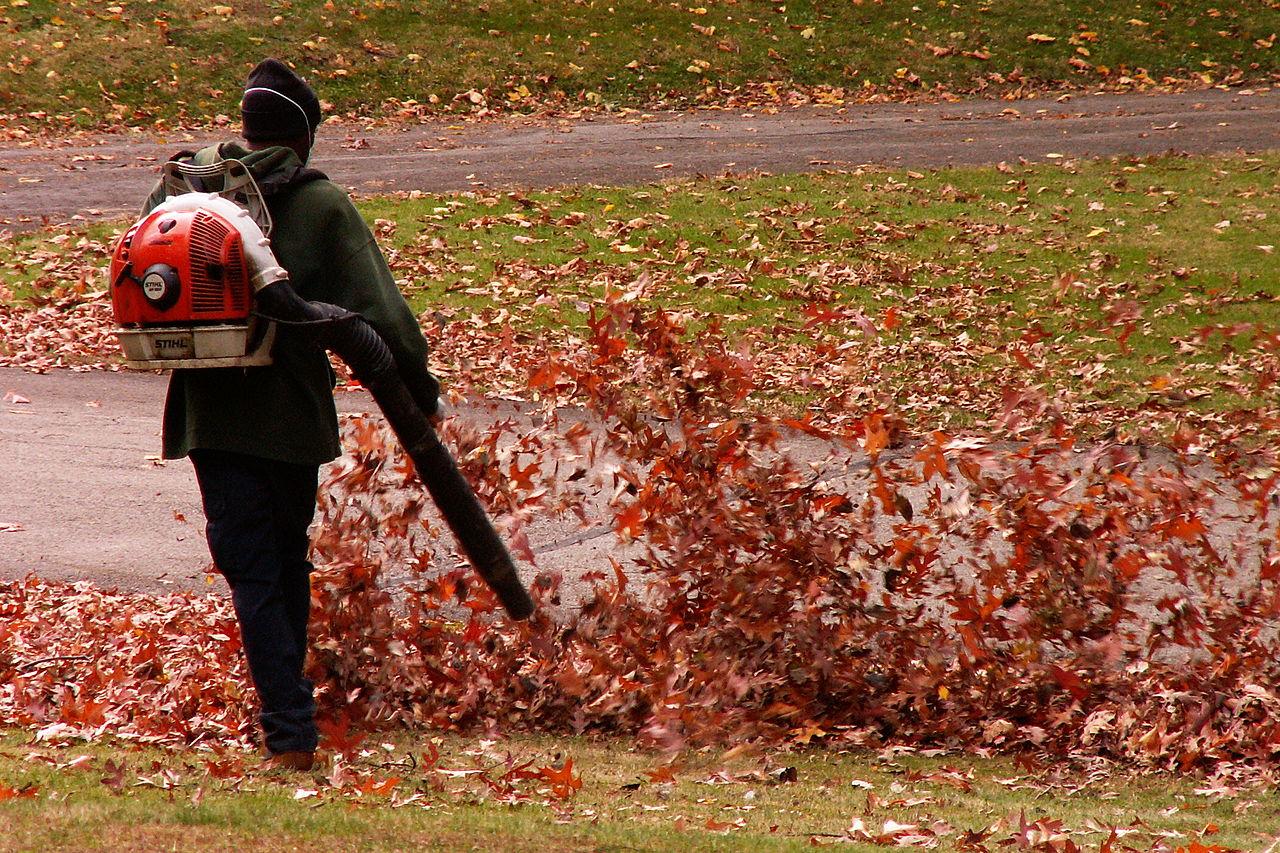 El soplador de hojas te servirá para mover hojas y hierba