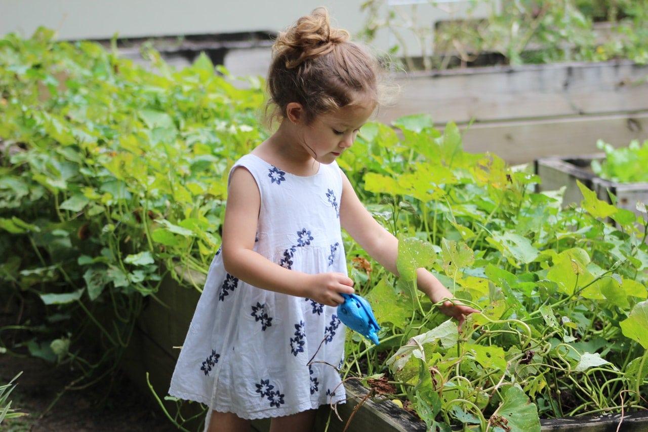 La jardinería es un mundo interesante para los niños