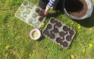 Consigue que tus hijos disfruten sembrando