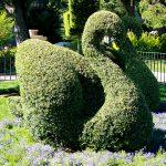 Haz figuras de animales con tus plantas