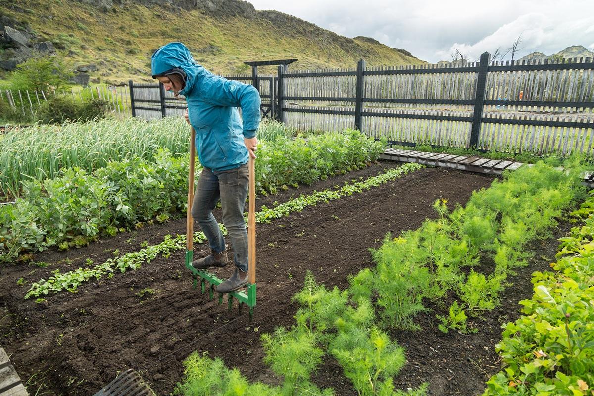 Formas de agricultura regenerativa