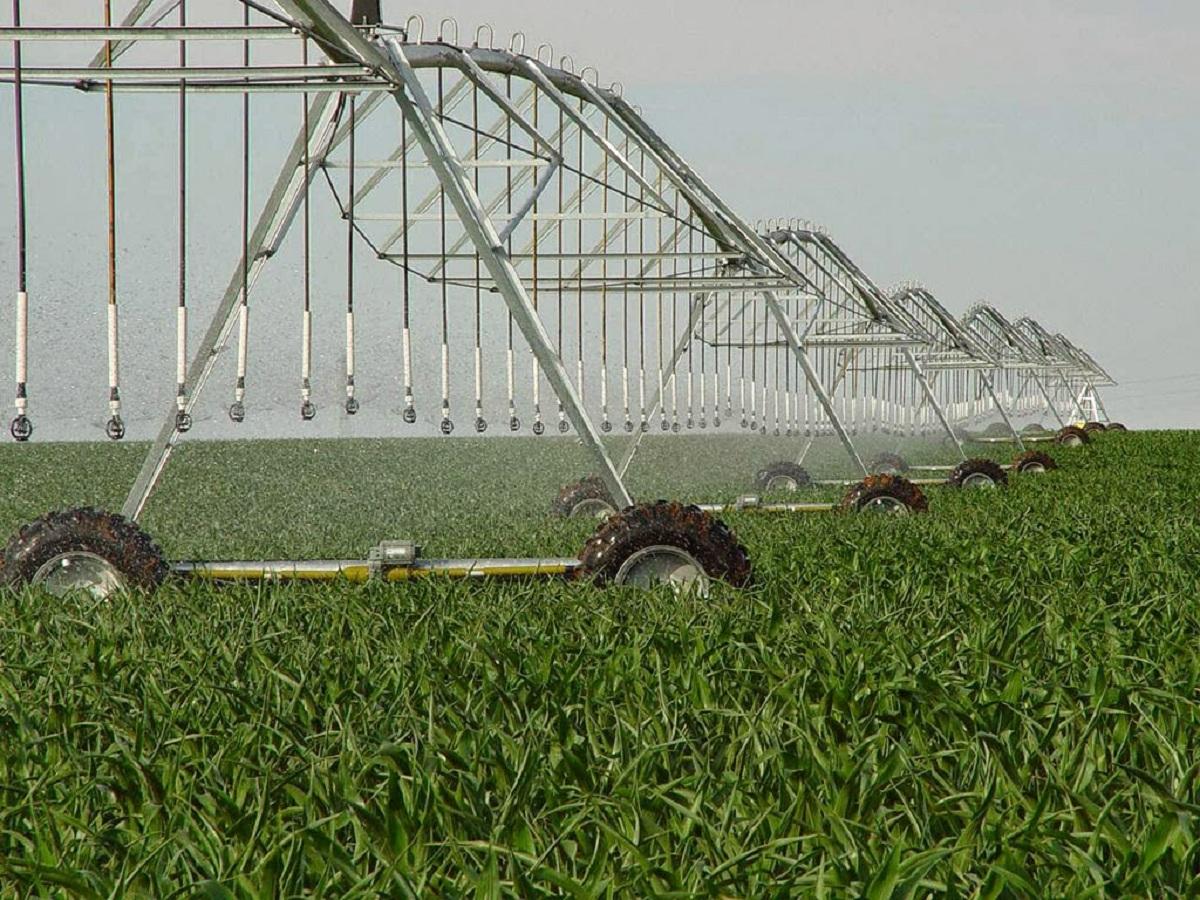 agricultura de regadío características
