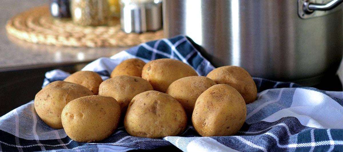 patatas de la variedad agata encima de un trapo de tela
