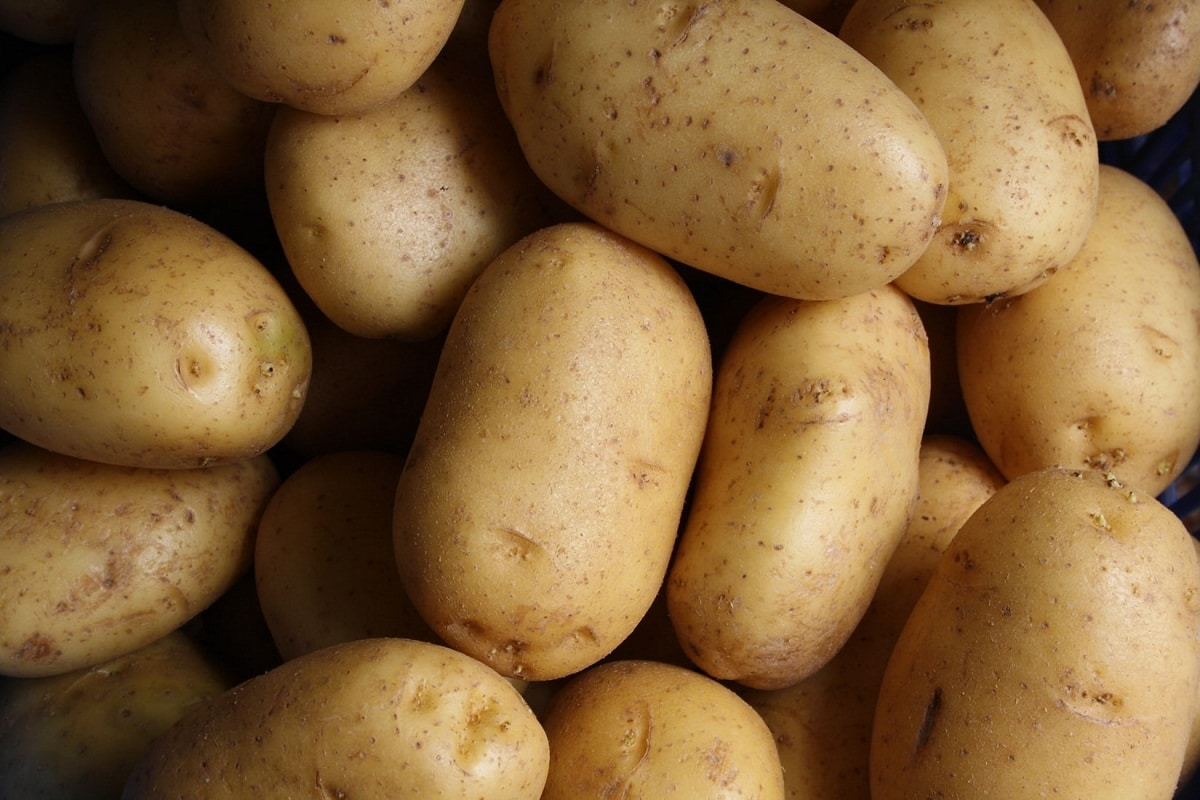 patatas que sirven para freir y numerosas recetas