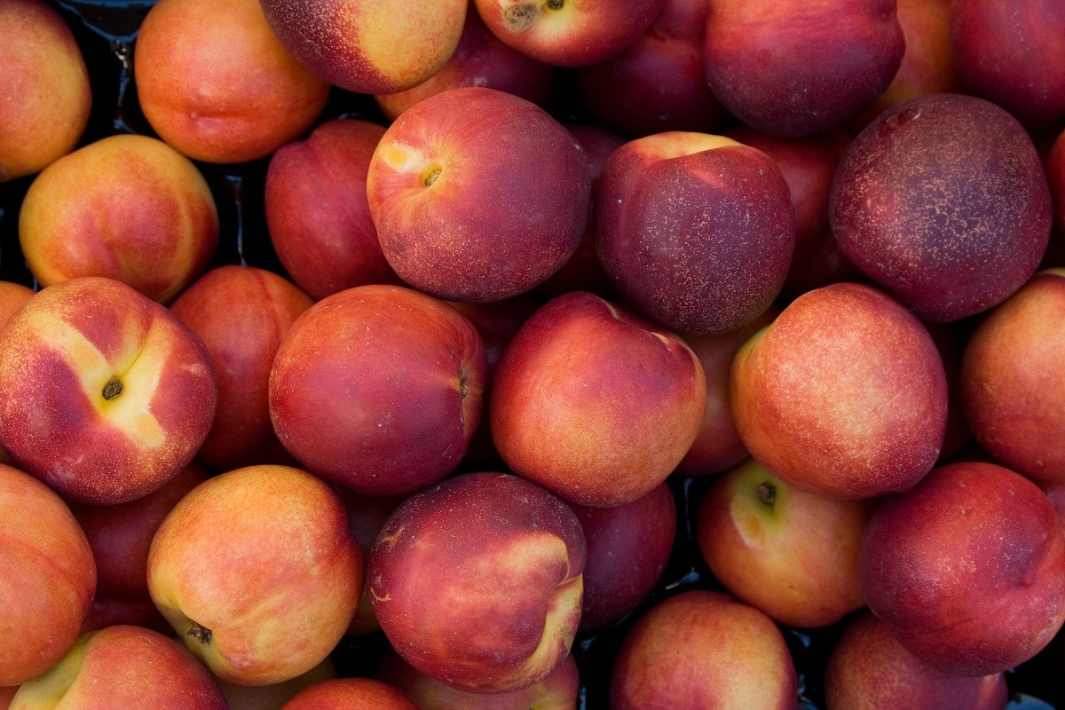 pavía fruta