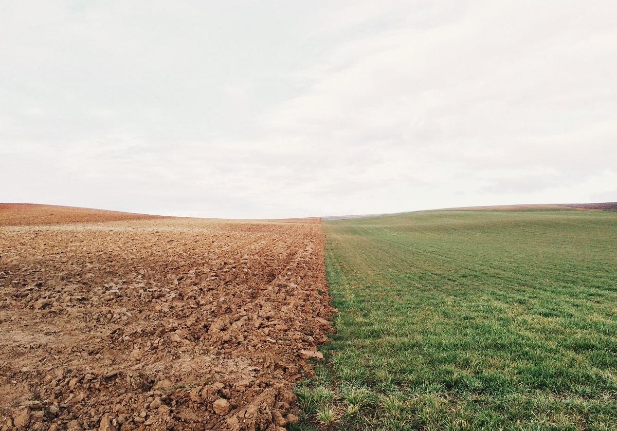 Evitar la degradación del suelo