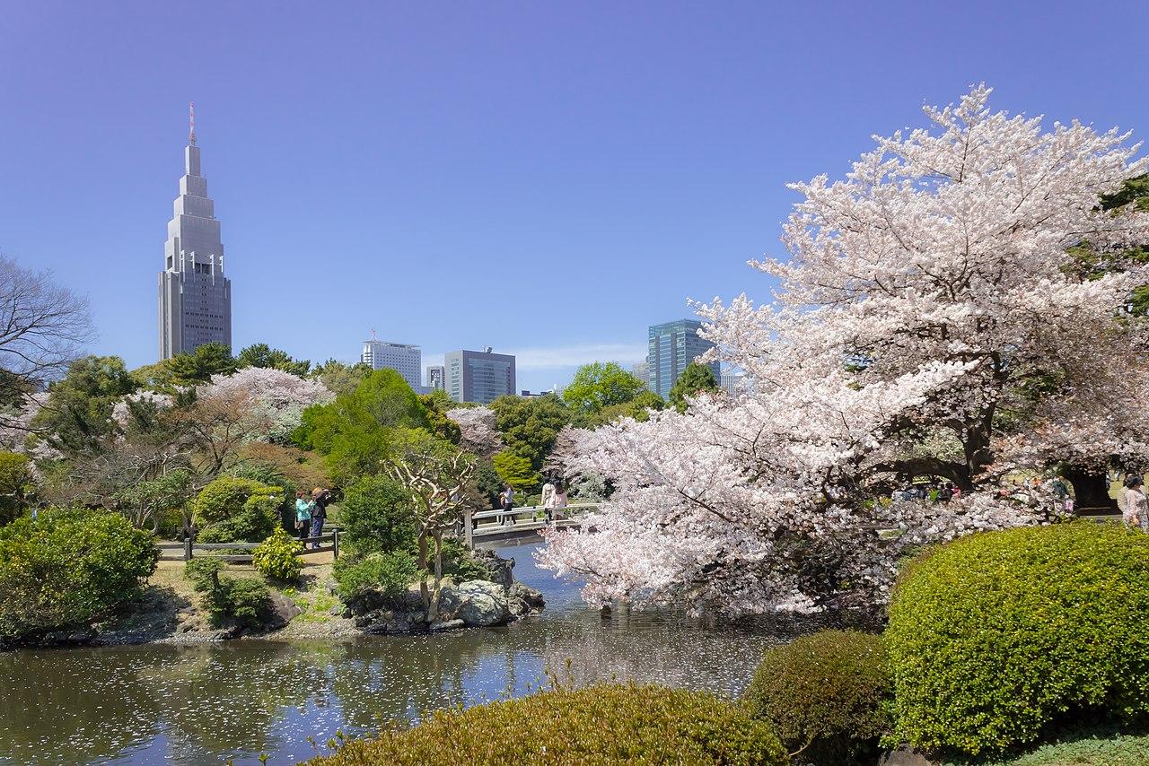 El jardín de Shinjuku es un típico jardín japonés tradicional muy bonito