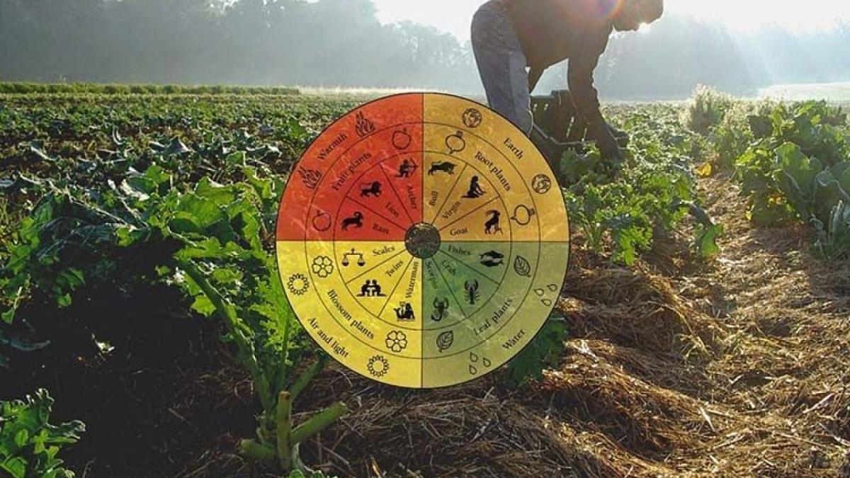 armonia de la agricultura biodinamica