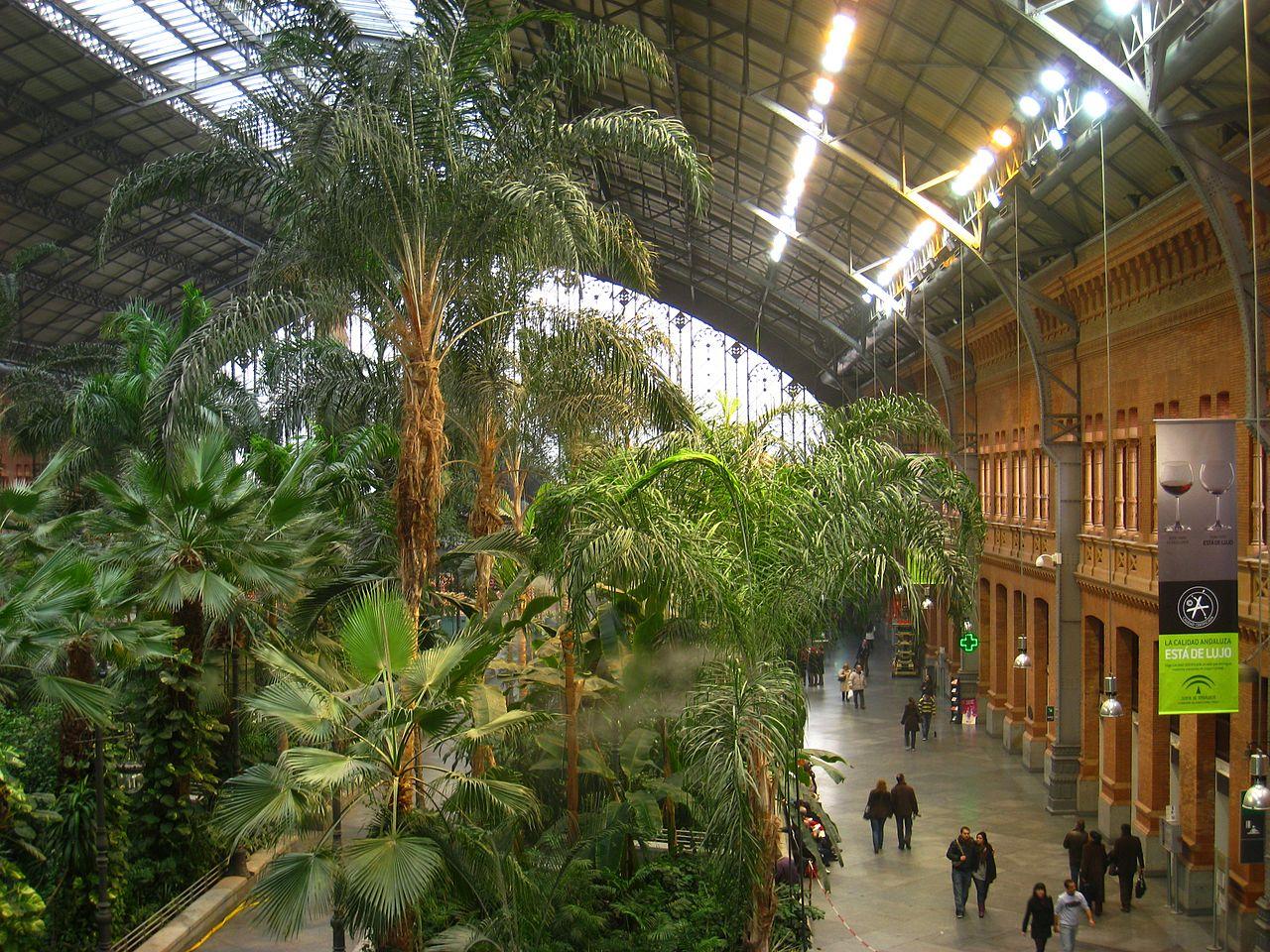 En la estación de Atocha hay muchas plantas tropicales