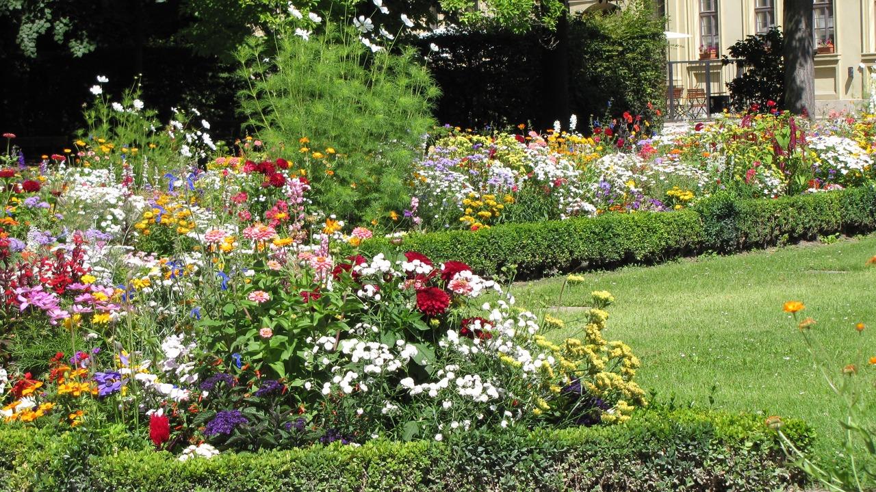 Cuida de tu jardín con productos naturales