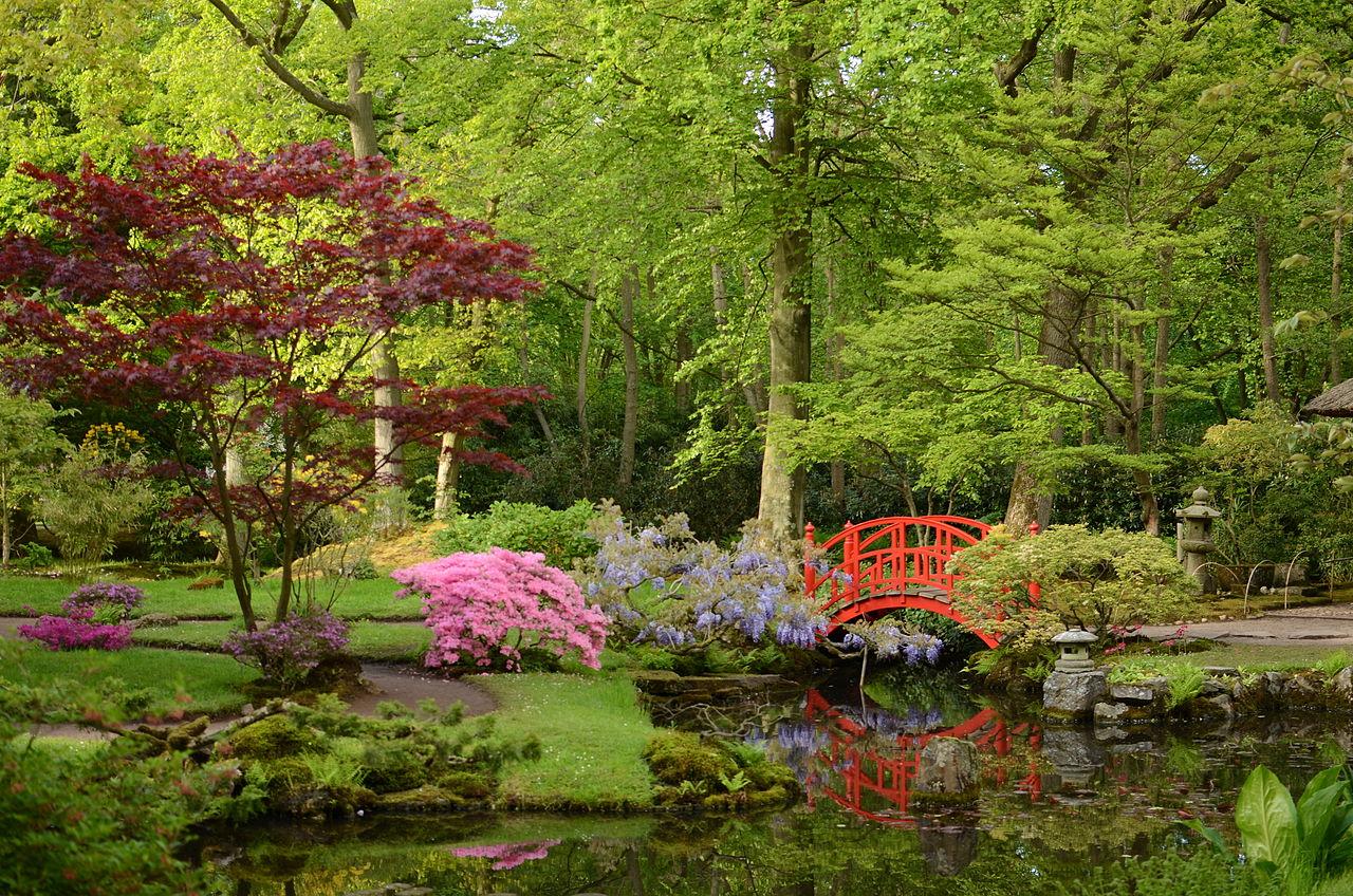 El jardín japonés es un bonito estilo de jardín asiático