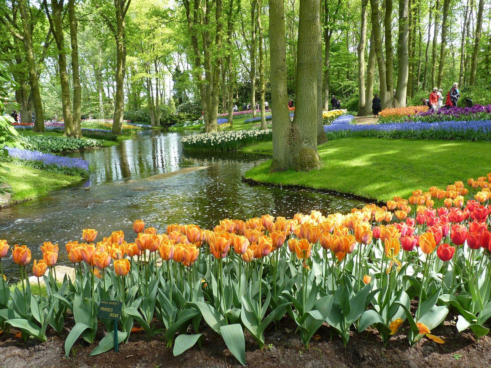 Los jardines de Keukenhof son preciosos