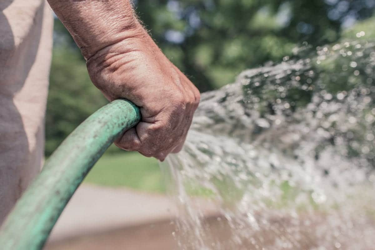 La manguera es muy útil para regar superficies grandes