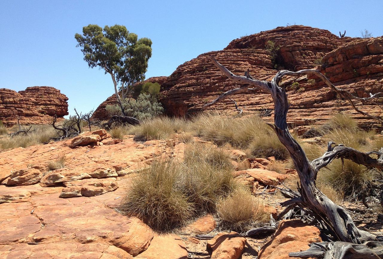 En Australia hay una gran superficie de suelo arenoso