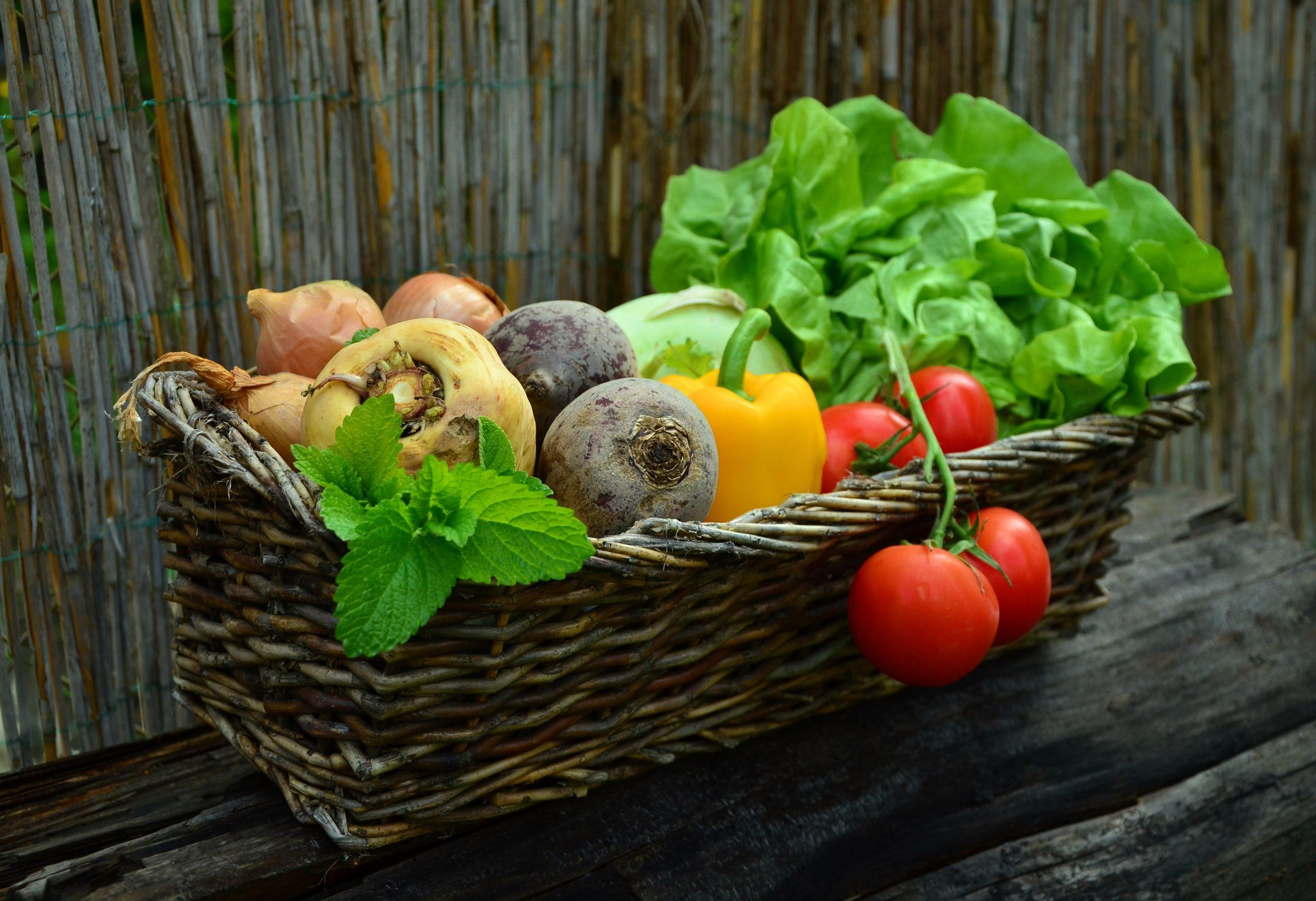 Cada temporada hay frutas y verduras distintas