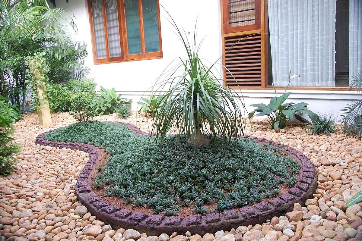 jardin con una especie de isla y con la planta Ophiopogon japonicus