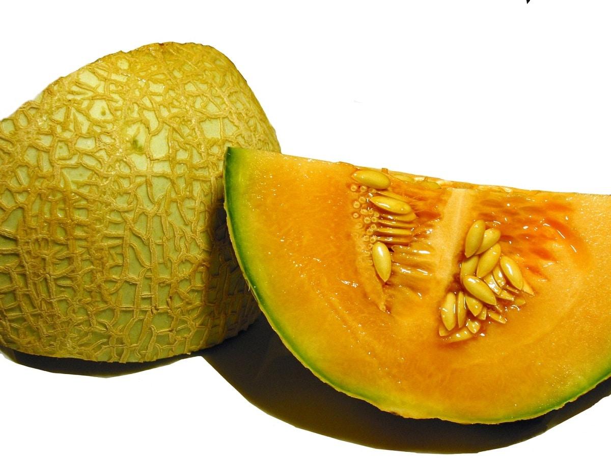 variedad de melon cantalupo