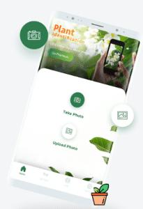 LeafSnap te ayudará a identificar plantas
