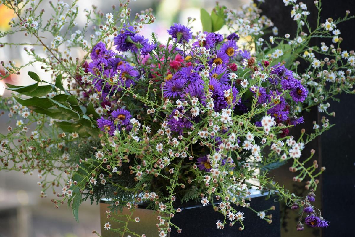 Hay que elegir flores duraderas para los cementerios